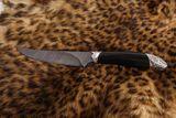 Nord Crown Anaconda